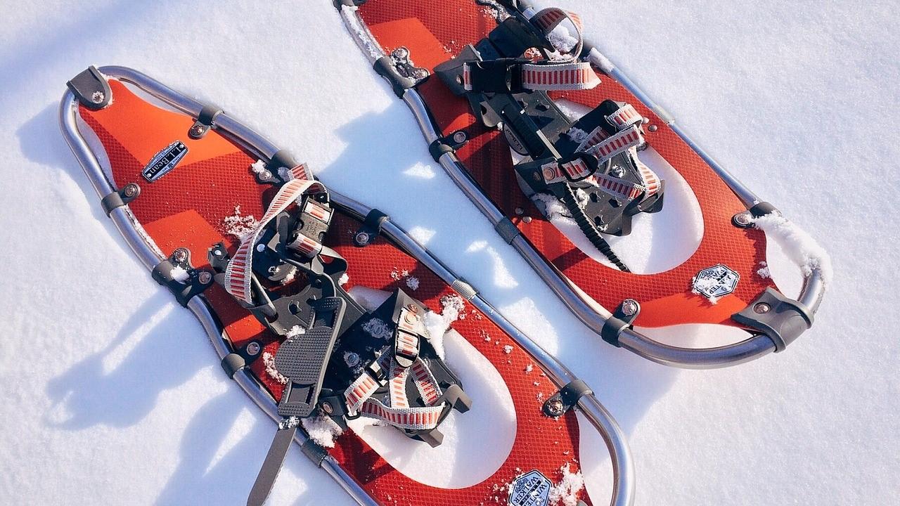 snowshoe-1983134_1280.jpg